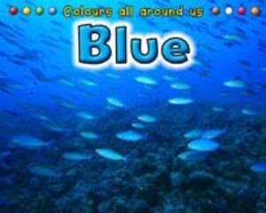 Blue by Rissman, Rebecca ( AUTHOR ) Sep-13-2011 Hardback,Rissman, Rebecca,Excell