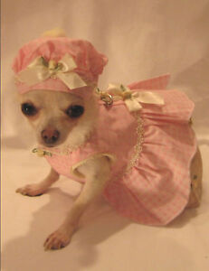 Little Darling Harness Dress Set/Dog Clothes/chihuahua M or L only