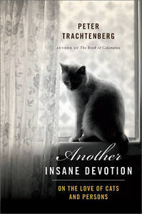 Another Insane Devotion: On the Love of Cats and Persons by Peter Trachtenberg