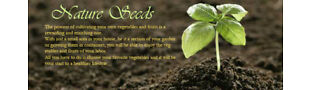 Nature-Seeds