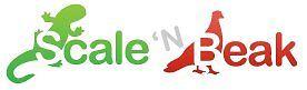 Scale'nBeak Accessories Limited