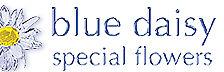 bluedaisyflowers