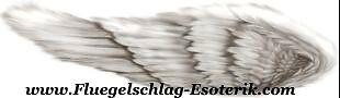 Flügelschlag-Esoterik