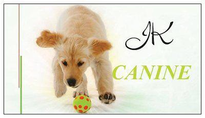 JK Canine
