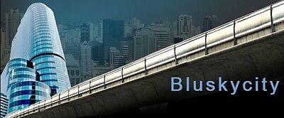 BluSkyCity