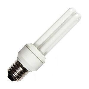 Diese Leuchtmittel sparen Energie