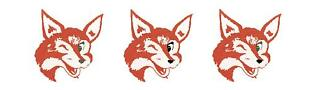 Red Fox Enterprises