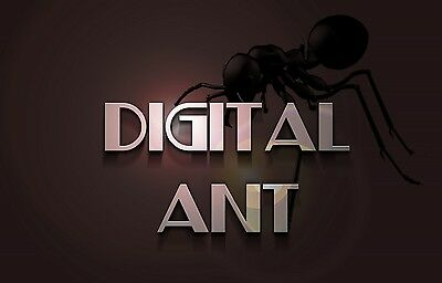 Digital Ant