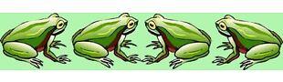 froggiesgreatstuff