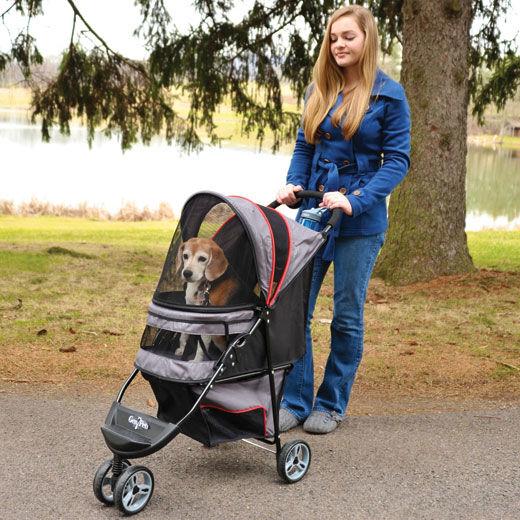 Einkaufsratgeber: Perfekt für Welpen, ältere und eingeschränkte Hunde – der Hundebuggy