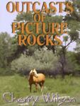 Outcasts of Picture Rocks, Cherry Wilson, 0786219025