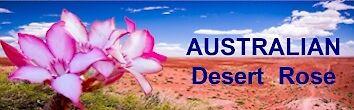 australianadenium