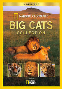 Big Cats Collection -