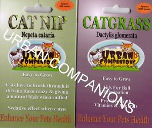 1 x CAT GRASS, 1 x CAT NIP Seed Packets - LOVE YOUR CAT