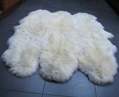 Genuine Luxury Ivory Huge Sexto Sheepskin Rug