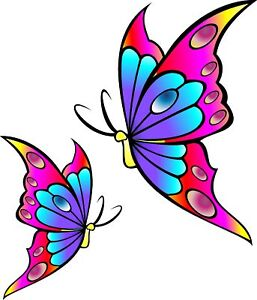 Multicolour-Butterfly-Car-Bike-Van-Camper-Sticker-decal