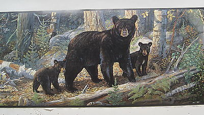 Black Bear With Cubs Bears In The Woods Wallpaper Border 6