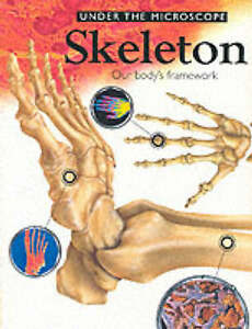 Skeleton-Under-the-Microscope-Jinny-Johnson-Book