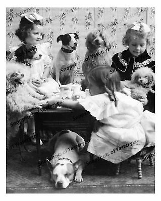 Vintage photo-Girls and dogs have tea party-8x10 in.