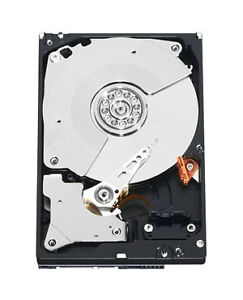 Western Digital Black Vs. Western Digital Velociraptor