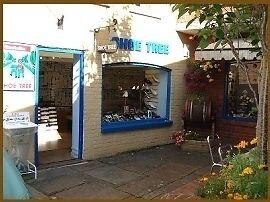 Shoe Tree of Wimborne