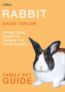 Rabbit Book by David Taylor (Paperback)