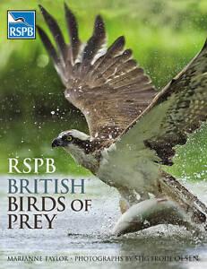 RSPB-British-Birds-of-Prey-Marianne-Taylor