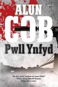 Pwll Ynfyd (Welsh Edition)-ExLibrary