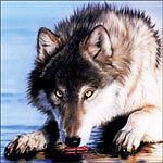 User avatar image for 5036826