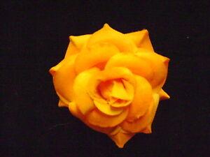 NEW-ORANGE-ROSE-FLOWER-HAIR-CLIP-SO