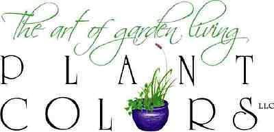 Plant Colors