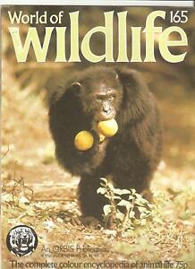 'World of Wildlife' Magazine---Vol 11 Number 165
