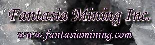 Fantasia Mining Inc