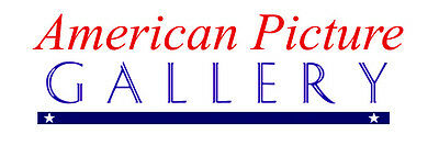 American Picture Gallery