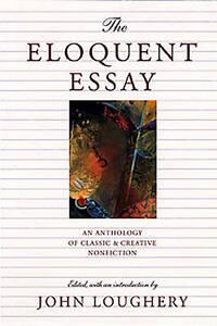 dummy essay