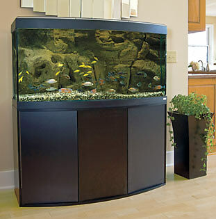 co2 aquarium buying guide ebay. Black Bedroom Furniture Sets. Home Design Ideas