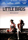 Little Birds (DVD, 2013)