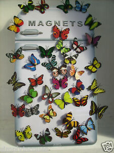 REALLY PRETTY SET OF 12 BUTTERFLY FRIDGE MAGNETS *NEW*