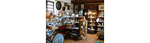 LYNNE'S CURIOSITY SHOP