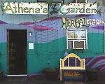 athenas_garden