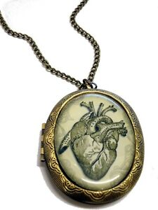 Anatomical Heart Locket drawing Long Gold Vintage