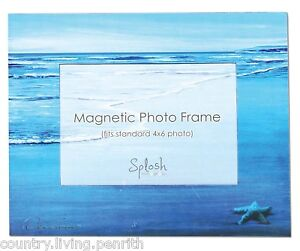 SPLOSH Magnetic Photo Frame - Starfish    (MAG011)