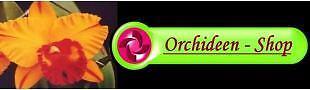 Orchideen-Shop