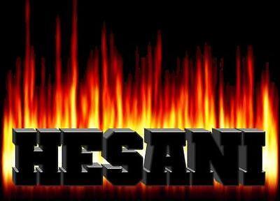 Hesani GmbH