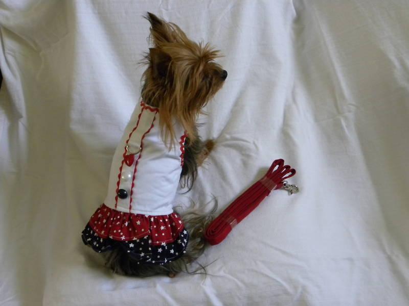 DOG CLOTHING APPAREL DRESS HARNESS LEASH NEW XS S M