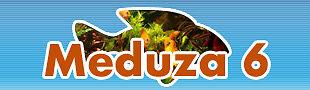 meduza6-aquarium