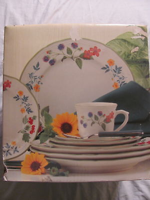 Mikasa Studio Nova Berry Lane Service 20 Piece Dish Set For 4 Bowlsplates