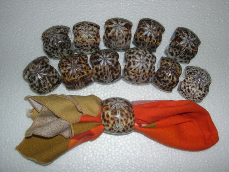 Real Sea Shell Napkin Rings, set of 12 carved Cowrie