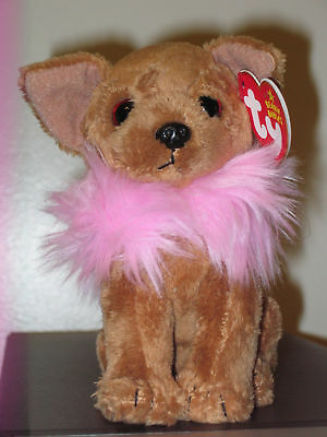 Ty Beanie Baby ~ DIVALECTABLE the Chihuahua Dog ~ MINT with MINT TAGS