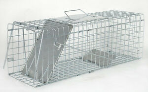SQUIRREL RODENT WIRE CAGE TRAP CATCH HUMANE POISON FREE LIVE ANIMAL CAPTURE